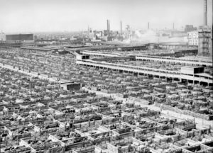 The Chicago Stock Yard